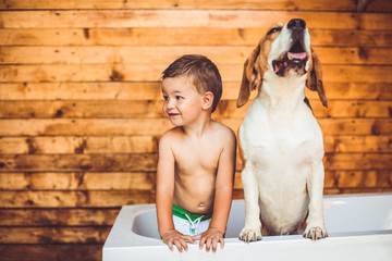The Best Dog Breeds For Families With Children